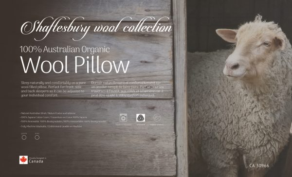 Majestic Mattress - Your Mattress Store & Bedroom Furniture Outlet | Shaftesbury Wool Pillow | Majestic Mattress - Your Mattress Store & Bedroom Furniture Outlet
